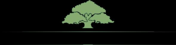 De Psyko-Fysiske Konsulenter Logo